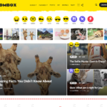 BoomNews – WordPress Theme for Viral Magazine News Blog Download