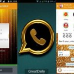 Download WhatsApp Gold Latest Android Apk