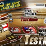 Real Cricke Test Match Apk Game Download