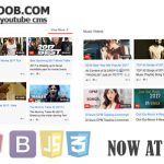 iYOOTOOB  Premium YouTube CMS Script Download