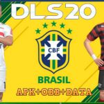 DLS 2020 APK Mod Money Brasileirao Download